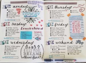 weekly journal example